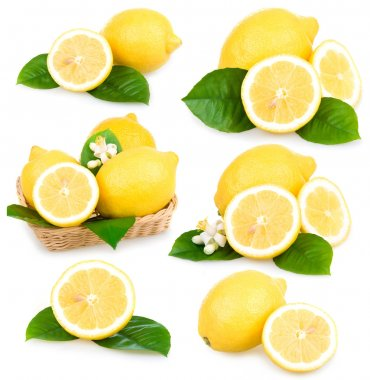 Set of ripe lemon fruits isolated