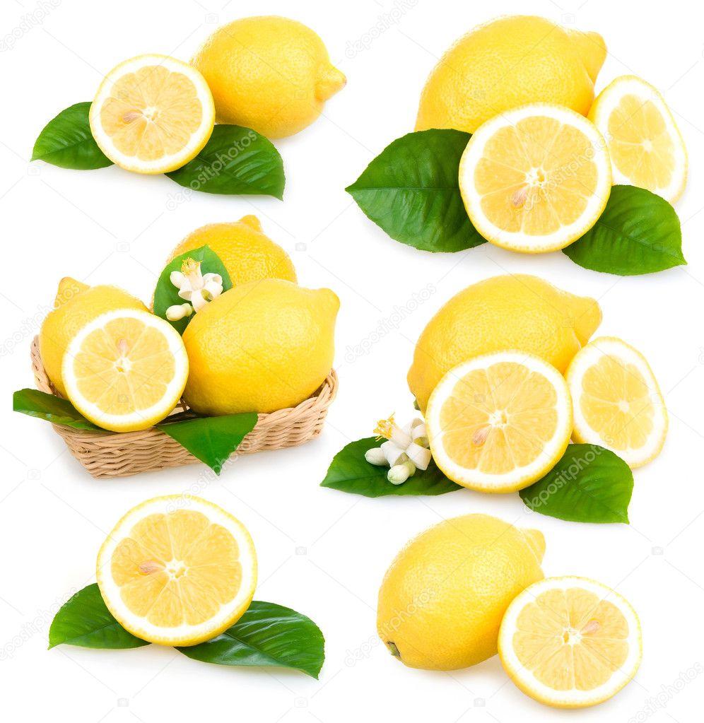 Set of ripe lemon fruits isolated