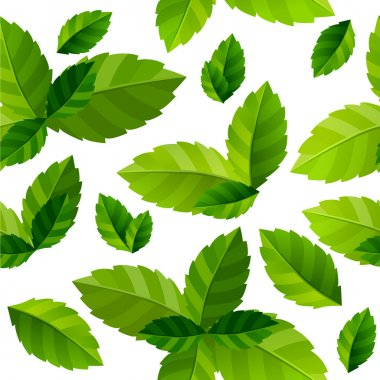 Seamless background mint leaves