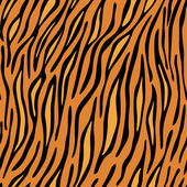 Fotografie Tiger skin seamless background