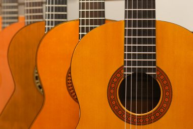 Row of classical acoustic guitars in musical store. Close-up vie