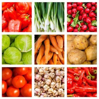 Collage of nine fresh vegetables lying on the window