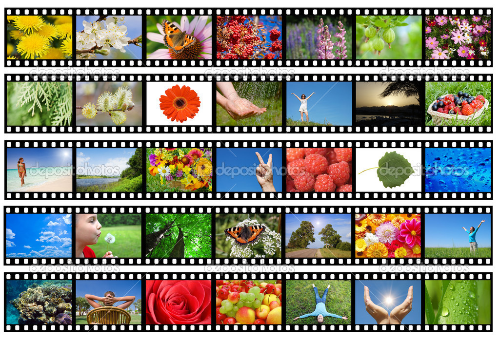 Film strip with different photos - life and nature