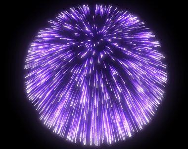 Festive purple fireworks at night