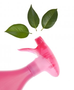 Environmentally Friendly Cleaning Bottle Spraying Leaves