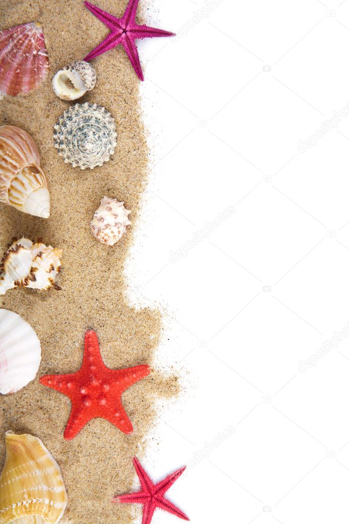 Sand and sea shells isolated