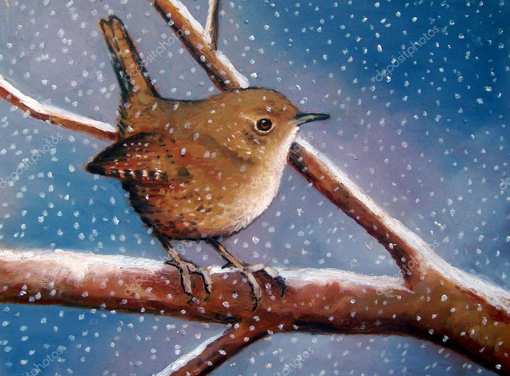 Pastel Painting of Wren in Winter