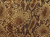 Fotografia modello di pelle di serpente