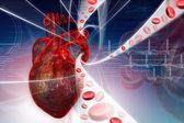 Fotografia cuore umano