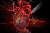 Fotografia cuore umano con ecg
