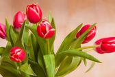 Kytice zářivě červené tulipány