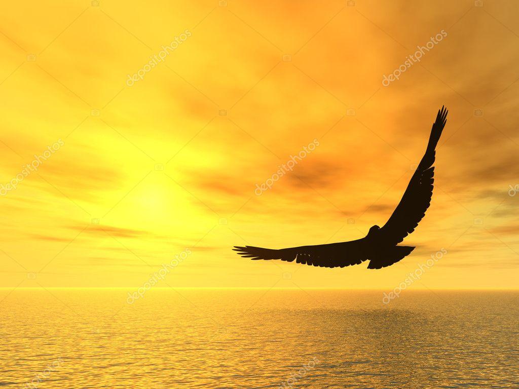 https://static5.depositphotos.com/1002941/419/i/950/depositphotos_4193074-stock-photo-soaring-eagle.jpg