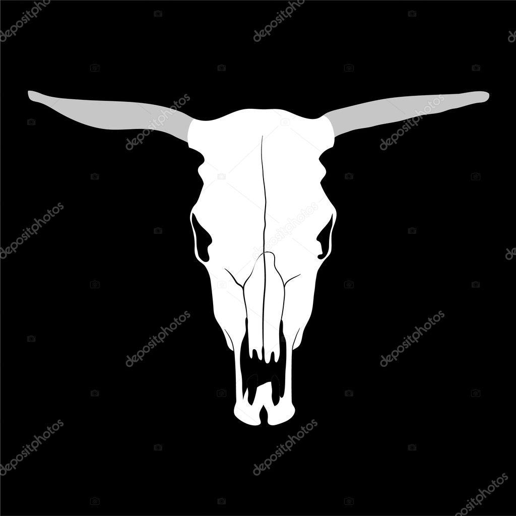 Kuh Schädel — Stockvektor © Chisnikov #4200566
