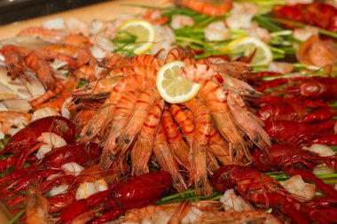 Shellfish Catering