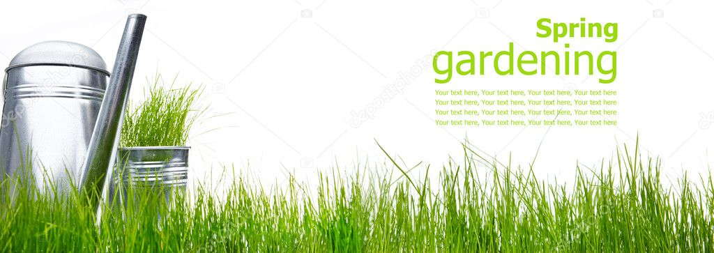 Watering can with grass and garden tools on white