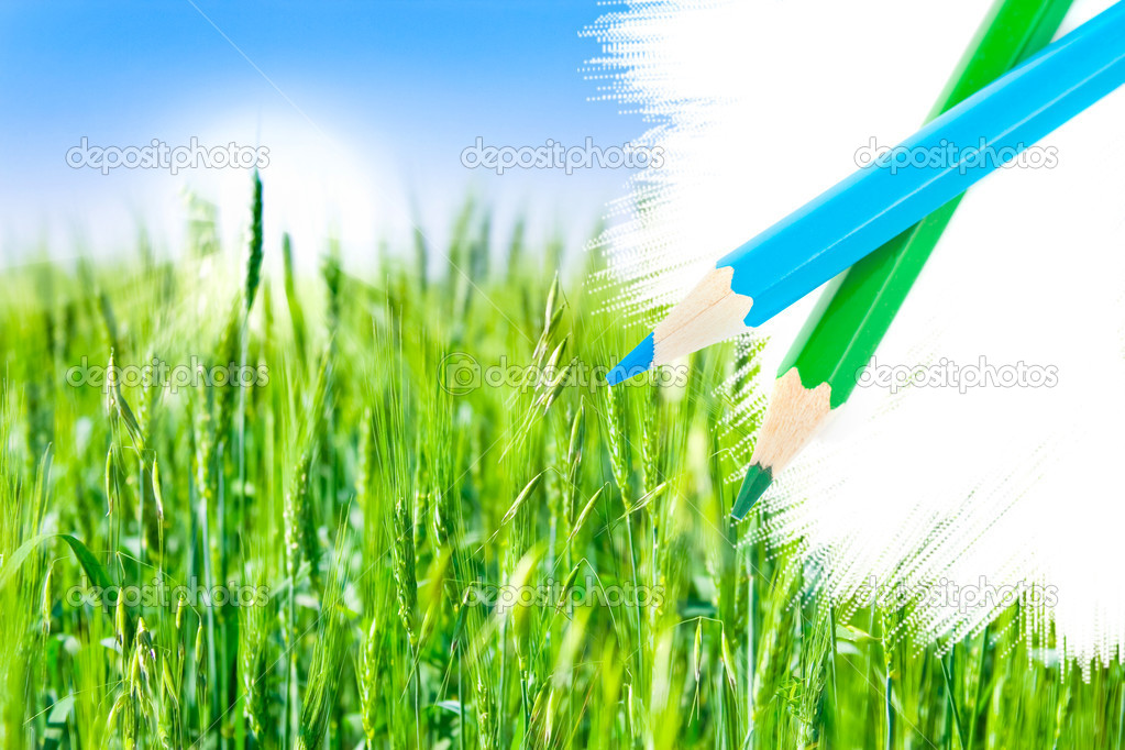 Green field and pencil