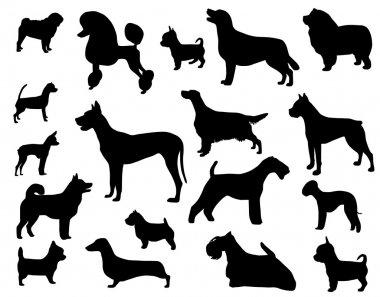 Dog breeds clip art vector