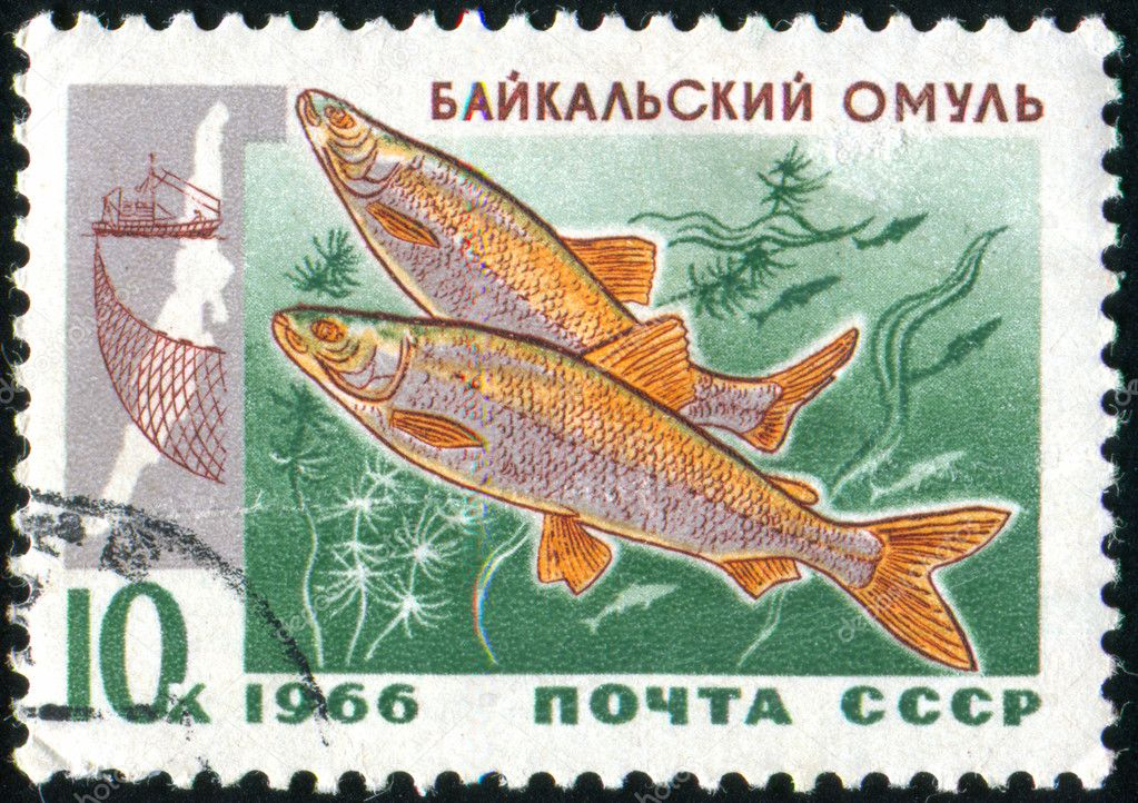 Stamp printed by Russia
