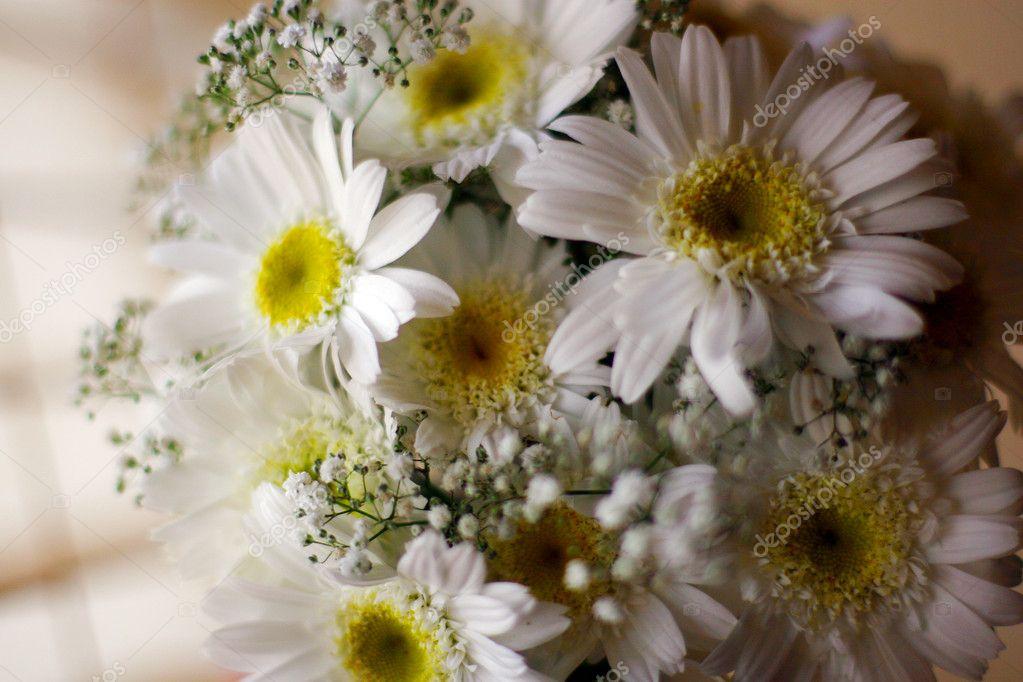 Wedding bucket of white flowers