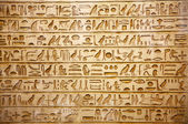 Photo Old egypt hieroglyphs