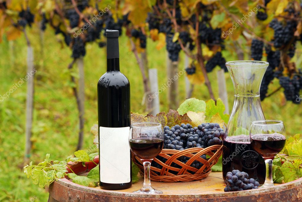 Vineyard with red wine bottle and wineglasses