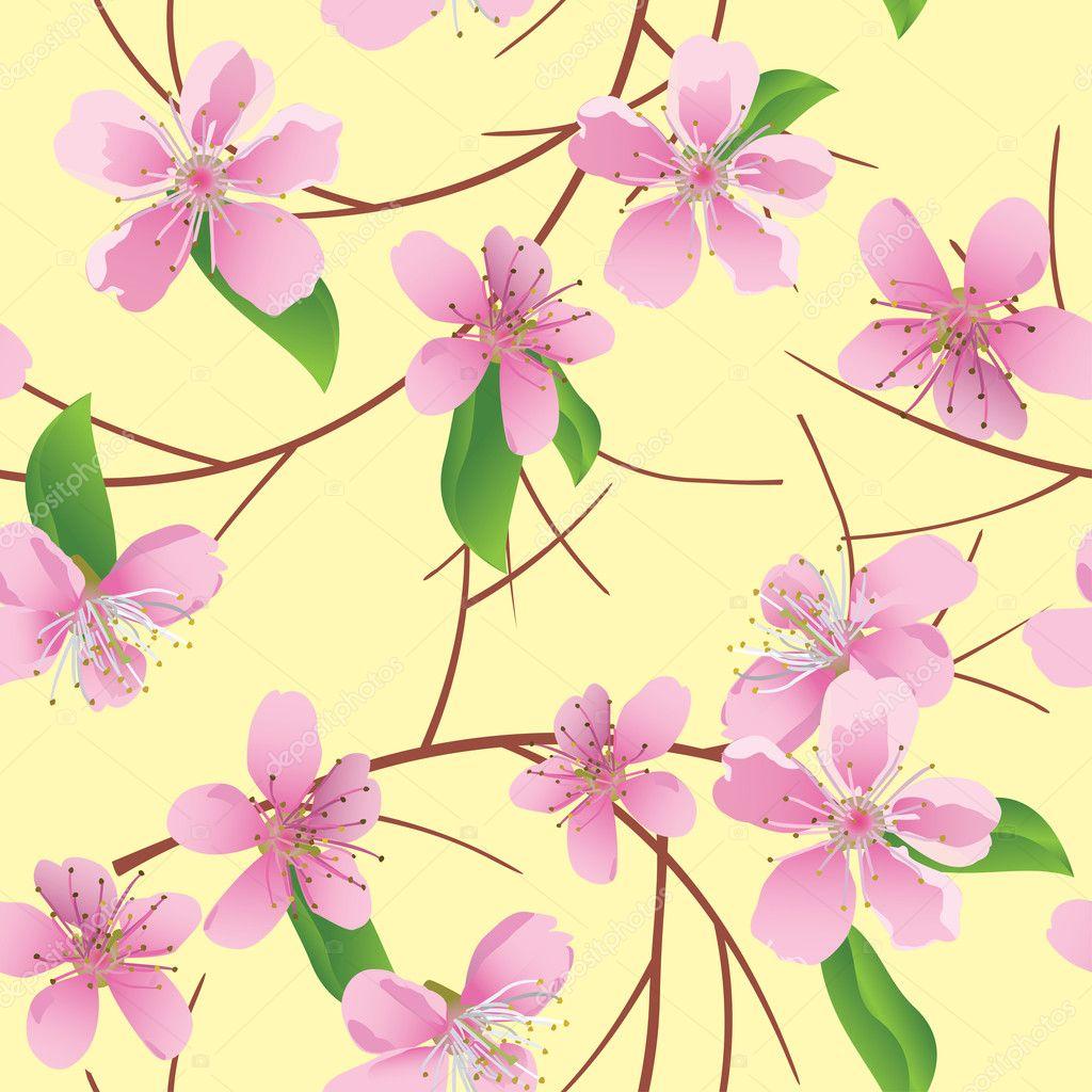 Цветы векторные рисунки