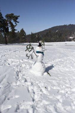 Snowman stock vector