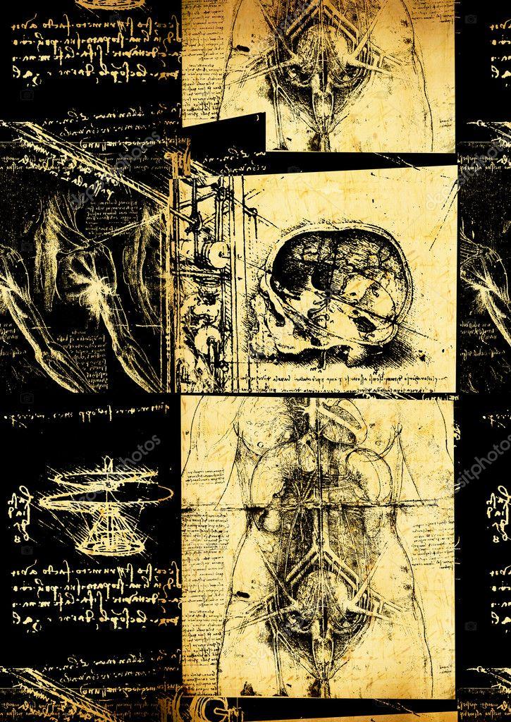 De Leonardo Da Vinci ingeniería y dibujo de anatomía — Fotos de ...