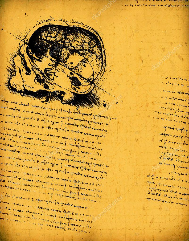 De Leonardo Da Vinci ingeniería y dibujo de anatomía — Foto de stock ...