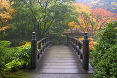 dřevěný most na japonská zahrada na podzim