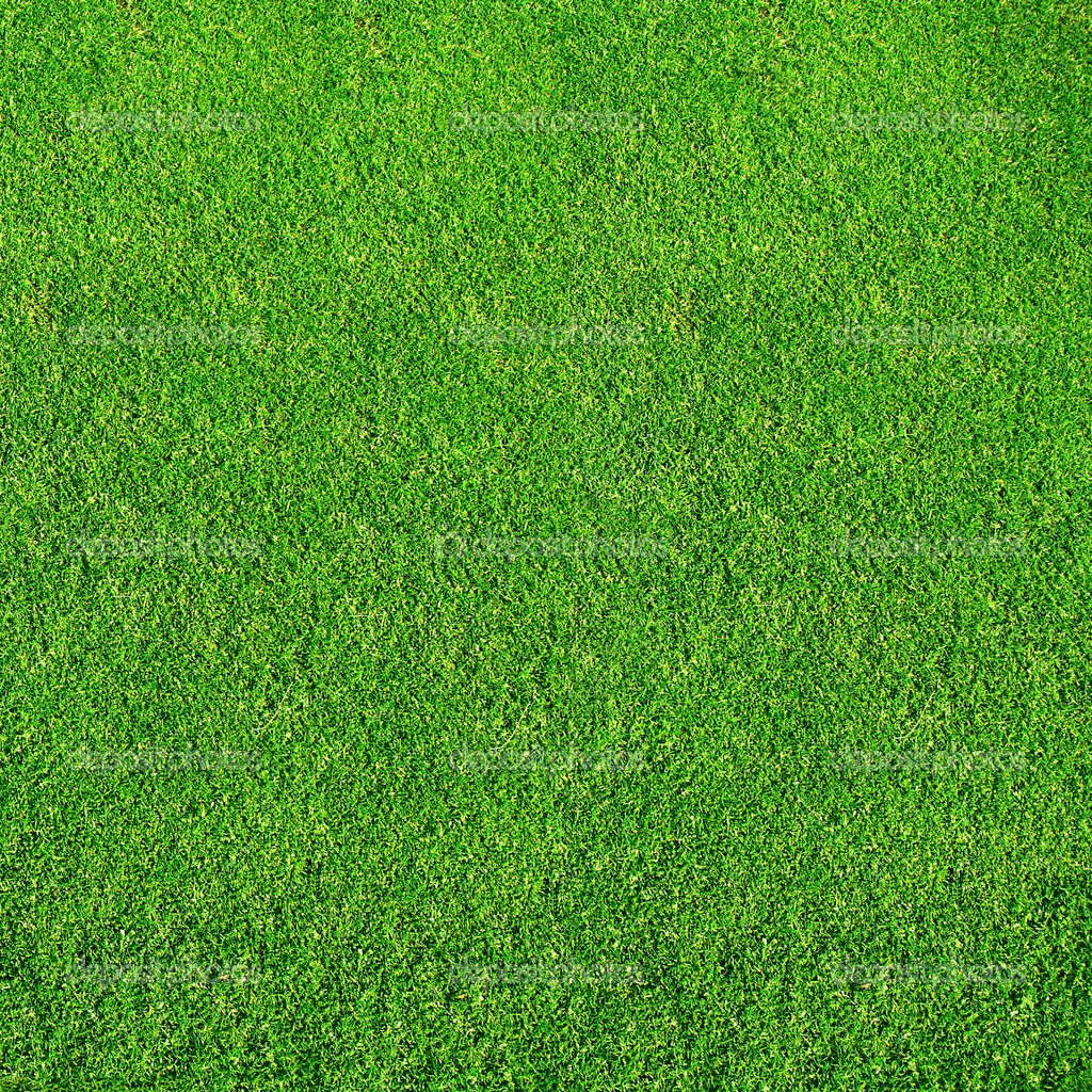 Green grass from golf course