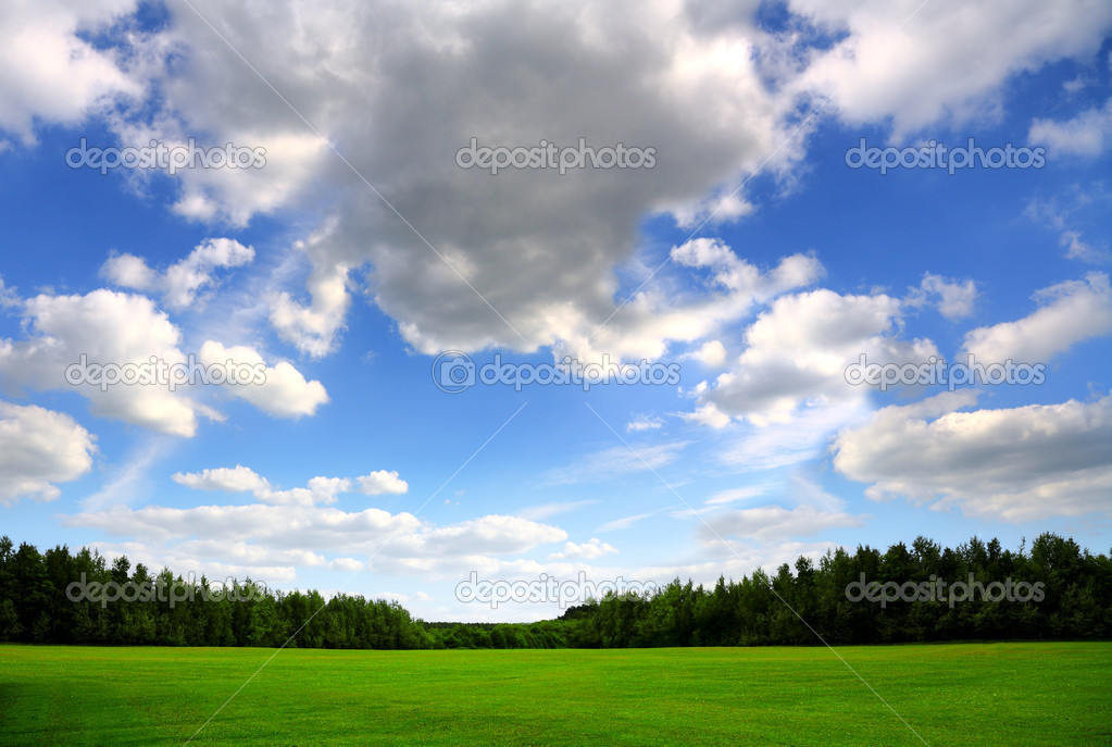 Green field and beautiful sky, nature background