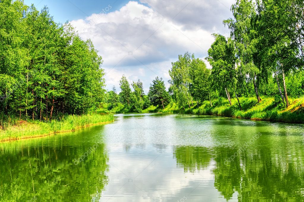 Фотообои Green nature landscape