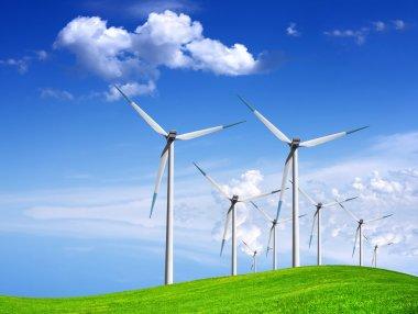 Wind generators on green field