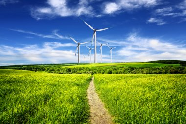 Eco power in nature landscape