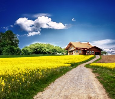 Country landscape with new house