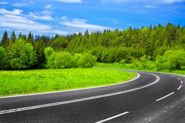 Road and green nature