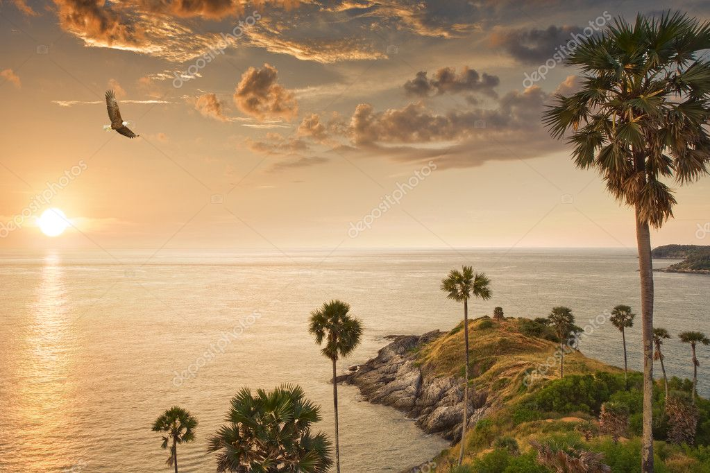 Panoramic view of nice tropic island during sunset