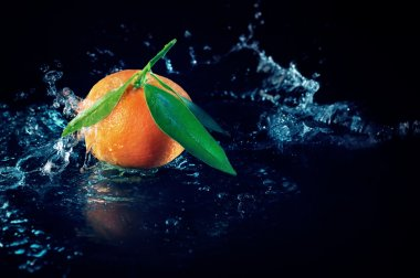 Orange on a black background with water
