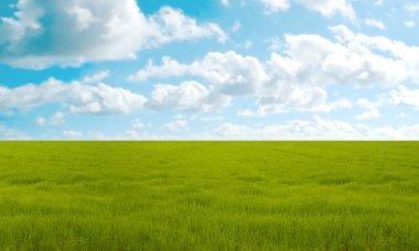 Green meadow under blu sky in summer day stock vector