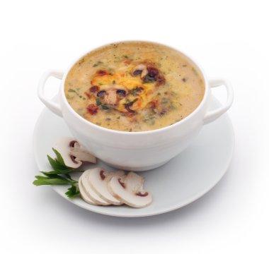 Soup of mushrooms