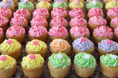 Rows of Many Pastel Colored Cupcakes