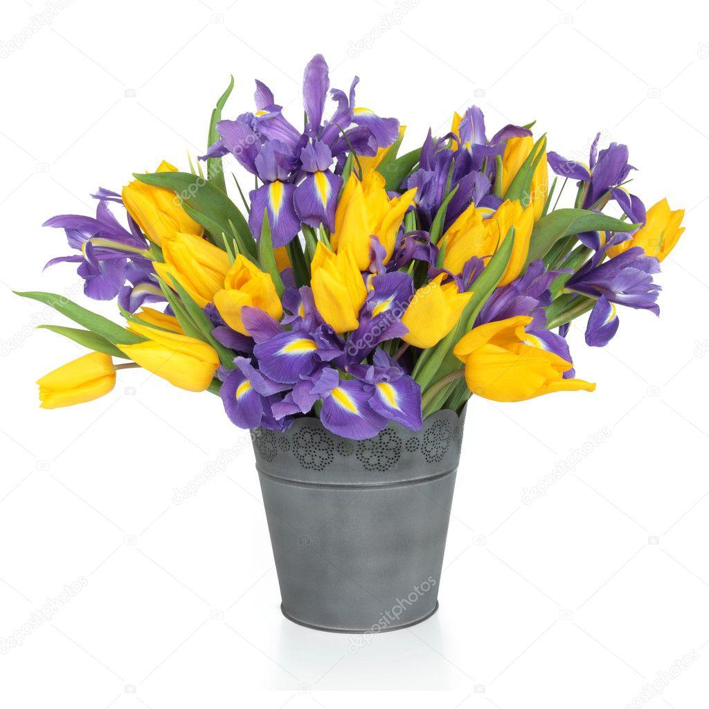 Iris and Tulip Flowers