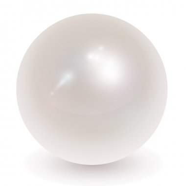 Pearl, vector.