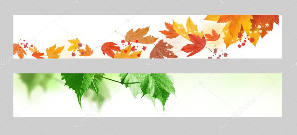 Autumn and spring banner