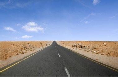 Lone desert road