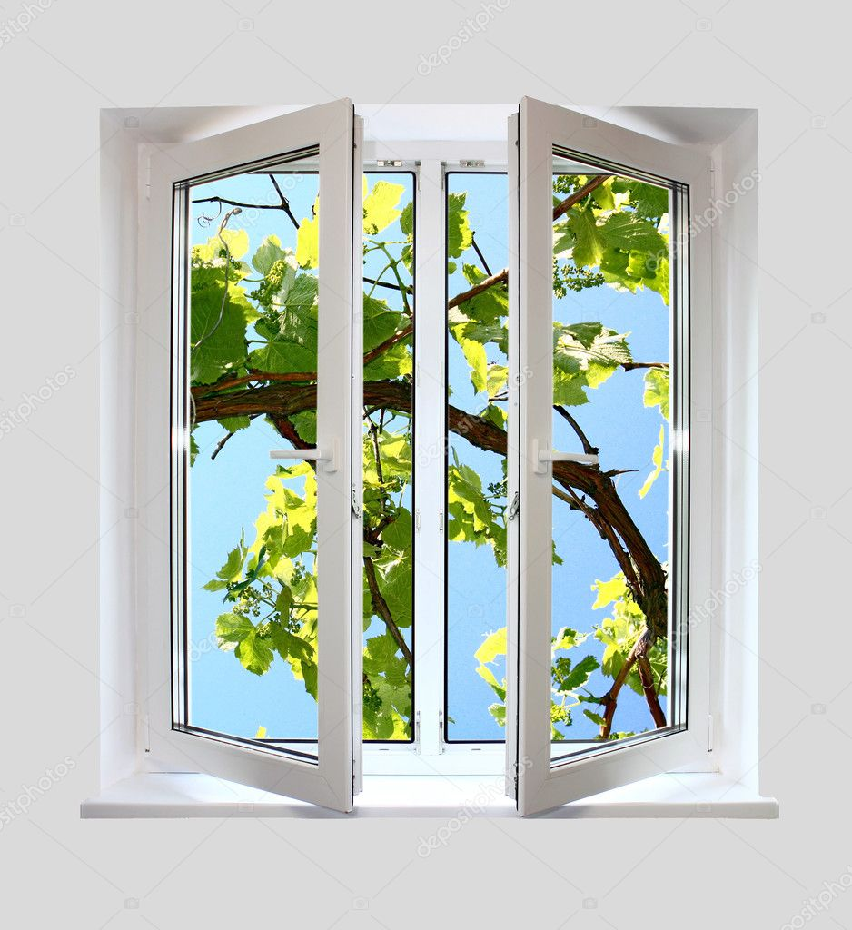 Open plastic window with a kind on grape-vine