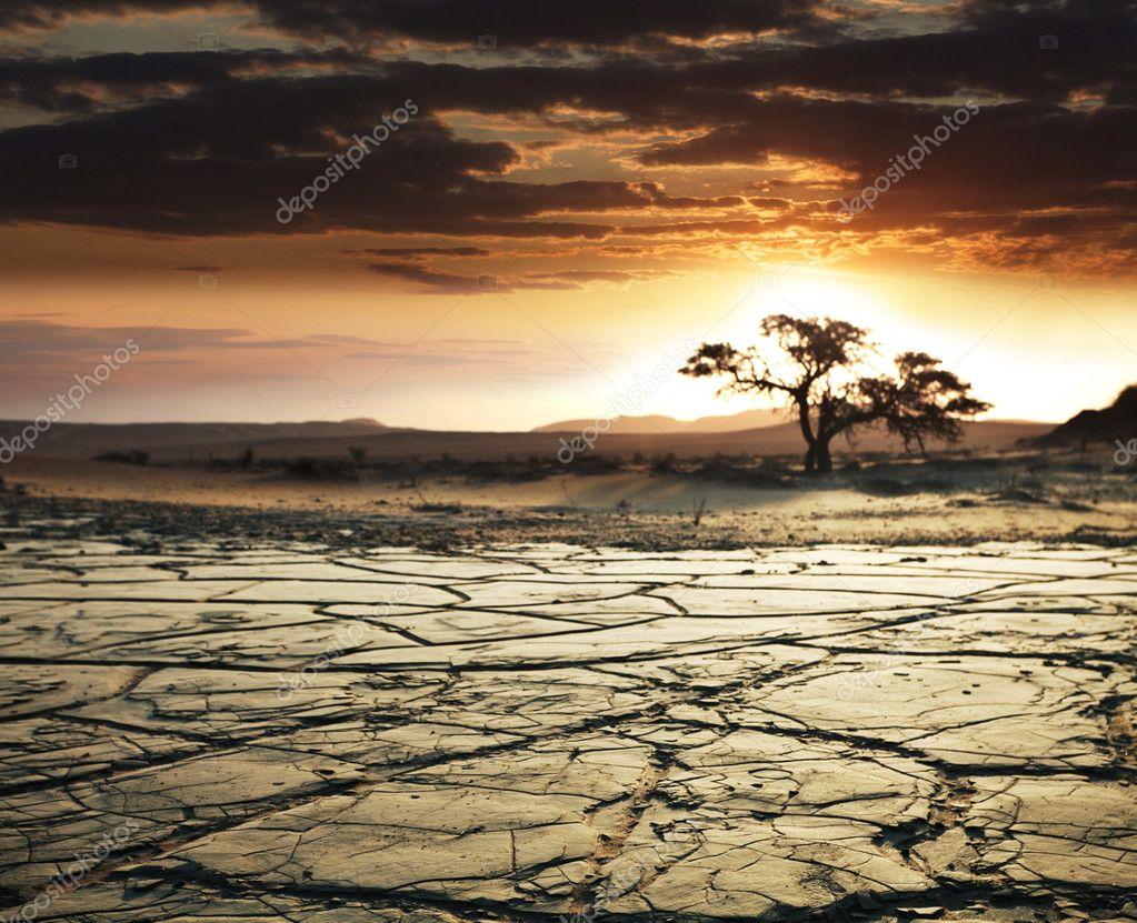Desert Gobi