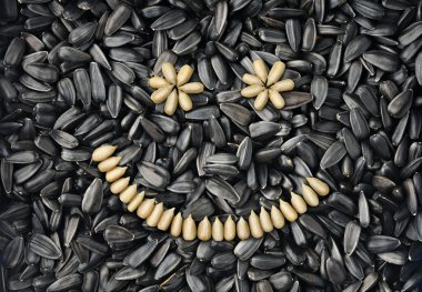 Sunflower seeds smiling