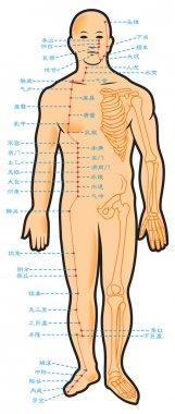 Chinese acupuncture scheme
